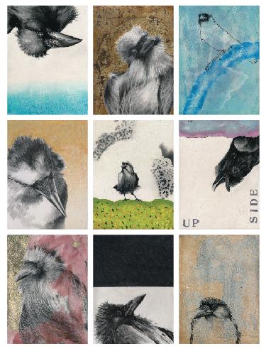 Blog 8-24-16 Ergo Sum-A Crow a Day