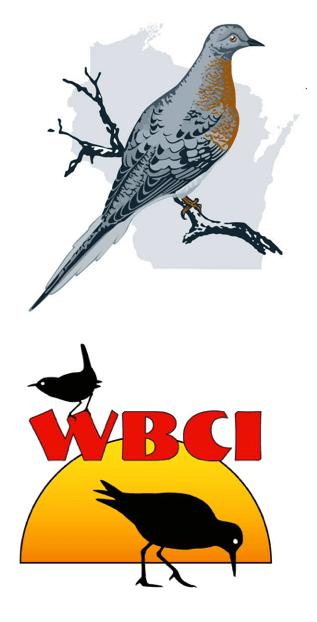 blog_wbci_wso_logos